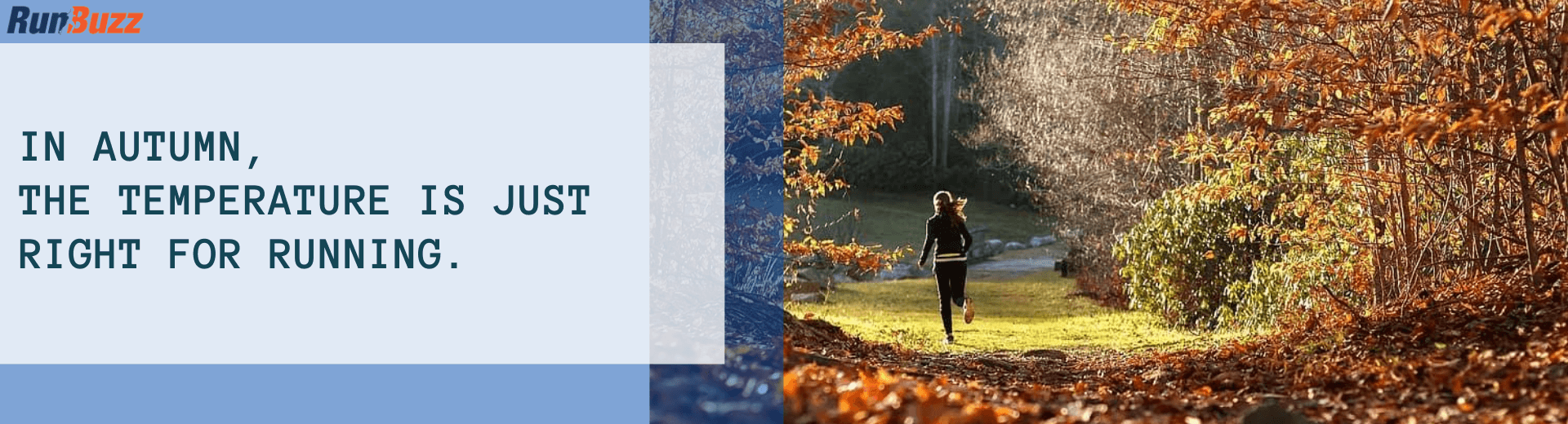 In-autumn-the-temperature-is-just-right-for-running