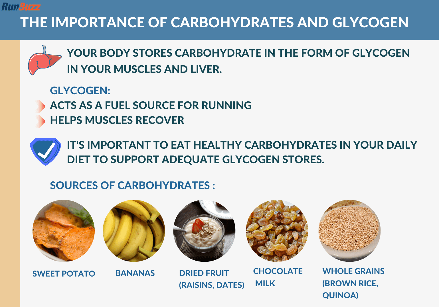 The-Importance-of-Carbohydrates-and-Glycogen